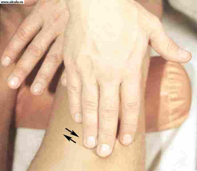 Смотреть онлайн бесплатно вибратор с массажем 12 фотография
