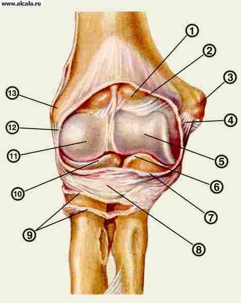 Нейродермит на ладонях и ступнях